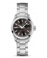 Omega Seamaster Aqua Terra 23110306006001